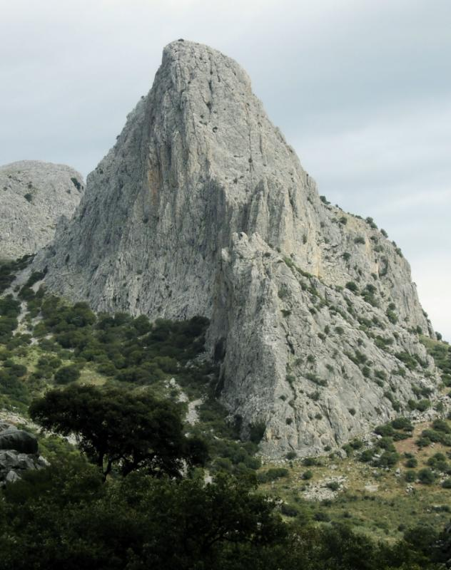 Imagen de GR 249. Stage 10. Alfarnatejo (Pulgarín Alto) - Alfarnate. The craggy Tajo de Gomer accompanies the walker during a large section of the route; note the oaks at its base