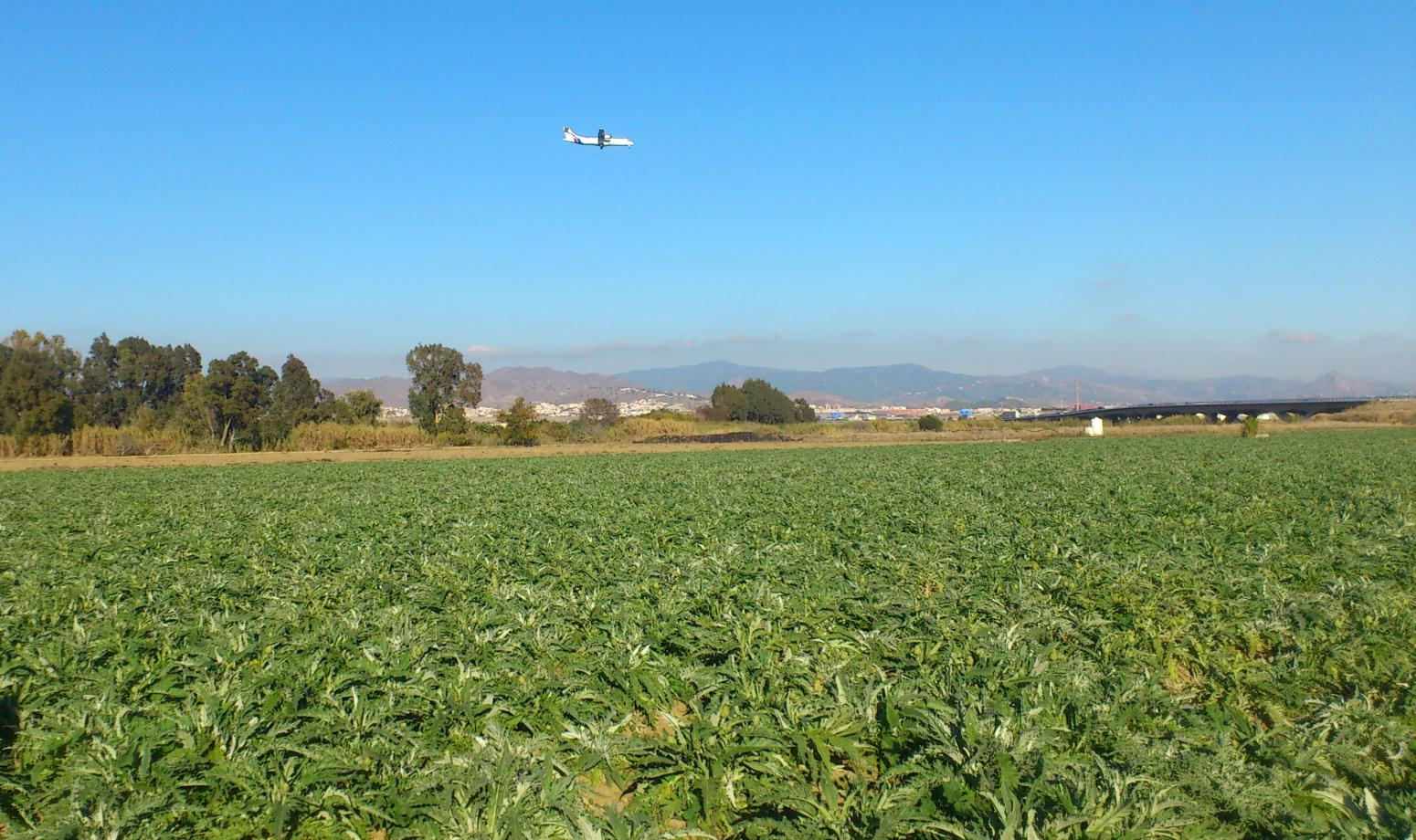 GR 249. Stage 35: Alhaurín de la Torre - Málaga. A plane maneuvering to land, on irrigated crops