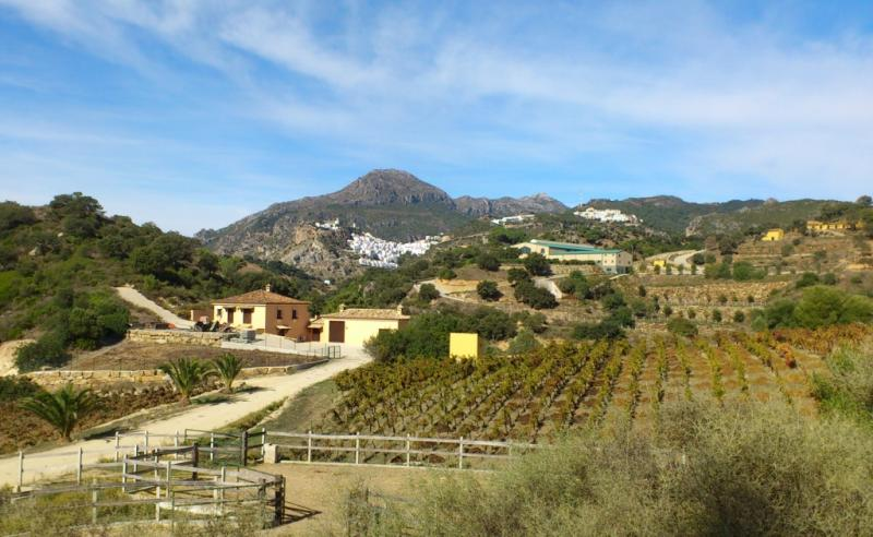 Gr 249 stage 29 casares estepona the great m laga path for Oficina padron malaga