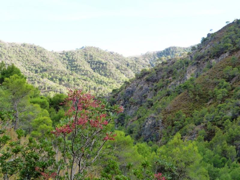 Vista del Valle del Chilla