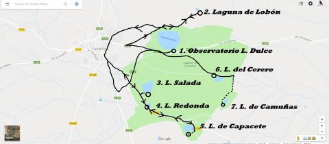 Lagunas de Campillos. Ornithological route