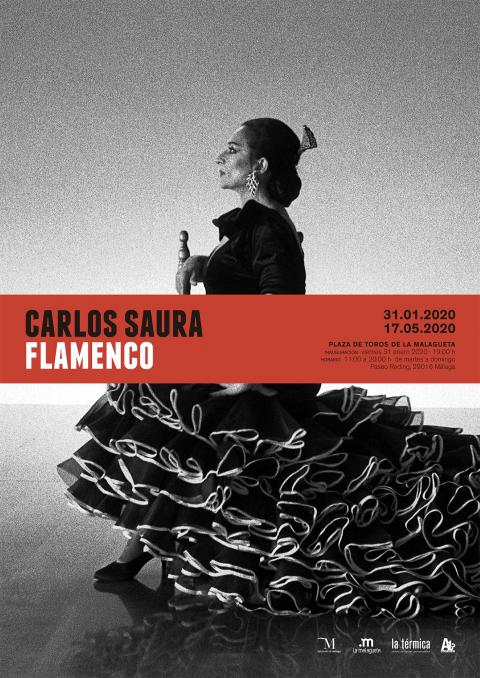 Cartel Expo Flamenco Carlos Saura