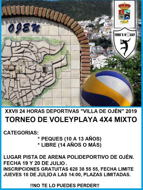 Cartel voley playa