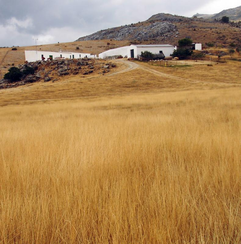 Imagen de GR 249. Stage 23. El Burgo - Ronda. Lifa farm is surrounded by wide pastures and fields